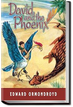 David and the Phoenix by Edward Ormondroyd