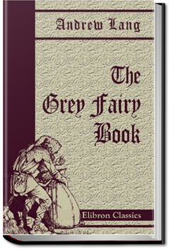 The Grey Fairy Book by Andrew Lang