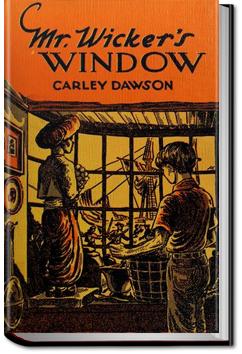 Mr. Wicker's Window by Carley Dawson