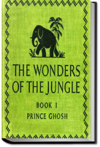 The Wonders of the Jungle - Book 1 by Sarath Kumar Ghosh