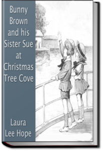 Bunny Brown and His Sister Sue at Christmas Tree Cove by Laura Lee Hope