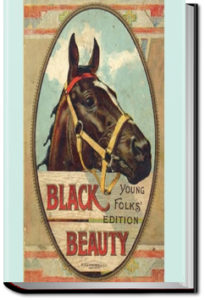 Black Beauty, Young Folks' Edition by Anna Sewell