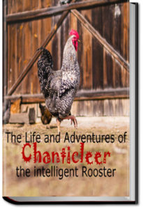 The Life and Adventures of Chanticleer