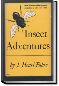 Insect Adventures by Jean-Henri Fabre and Louise Hasbrouck Zimm