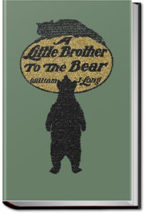 A Little Brother to the Bear and other Animal Stories by William J. Long